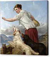 The Highland Lassie Canvas Print