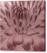 The Painted Flower Canvas Print