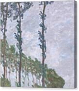 The Poplars Canvas Print