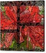 The Rhody 02 Canvas Print