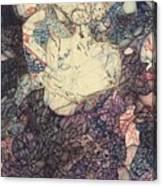 The Self-tormentor Canvas Print