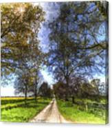The Summer Farm Track Art Canvas Print