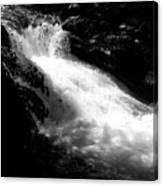 The Vintgar Gorge Canvas Print