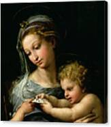 The Virgin Of The Rose Canvas Print
