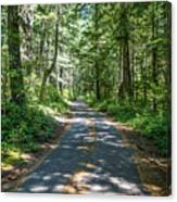 Thickly Wooded Area Canvas Print
