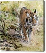 Tiger In The Woods Canvas Print