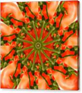Tomato Kaleidoscope Canvas Print