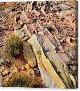 Tracks Of Color In Valley Of Fire Canvas Print