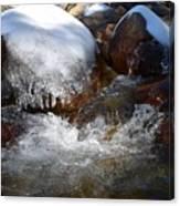 Trail To Tokopah Falls Canvas Print