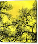 Tree Fantasy 18 Canvas Print