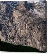 Teton Tree Line  Canvas Print