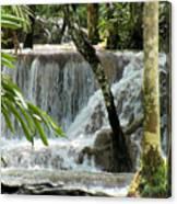Tropical Waterfall Canvas Print
