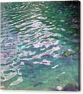 Trout Canvas Print
