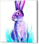 Turquoise And The Hare  Canvas Print