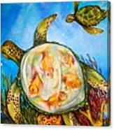 Turtle Tank Canvas Print