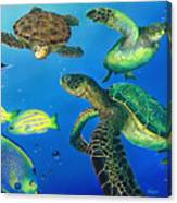 Turtle Towne Canvas Print