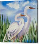 Twin Egrets Canvas Print