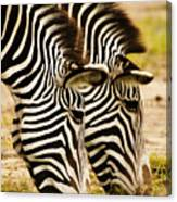 Twins In Stripes Canvas Print