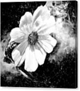 Universal Floral Canvas Print
