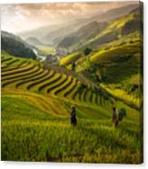 Valley In Sunset Canvas Print