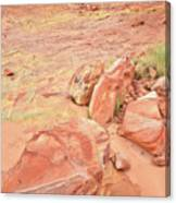Valley Of Fire's Wash 3 Canvas Print