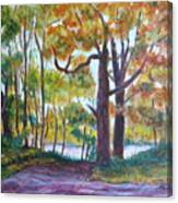 View From My Driveway Canvas Print