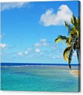 View Of Fiji Canvas Print