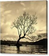 Wanaka Tree - New Zealand Canvas Print