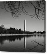 Washington Memorial Framed By Cherry Trees In The Winter Canvas Print