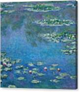 Water Lilies 1906 Canvas Print