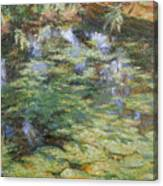 Water-lilies Canvas Print
