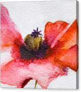 Watercolor Poppy Flower Canvas Print