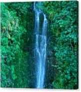 Waterfall Close-up Canvas Print