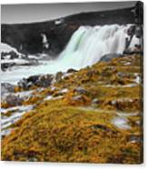 Waterfalls Of Iceland Canvas Print