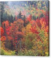 White Mountain Foliage Canvas Print
