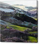 Winter In North Wales Canvas Print