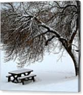 Winter Picnic Canvas Print