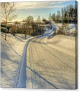Wintry Road Canvas Print