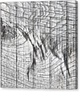 Wood Detail Canvas Print
