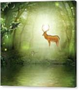 Wood Glade Canvas Print