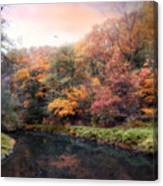 Woodland River Canvas Print