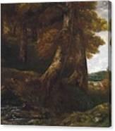 Woods Entrance Canvas Print