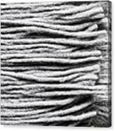 Wool Scarf Canvas Print