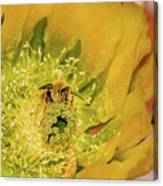 Working Bee Canvas Print