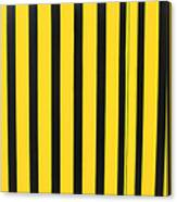 Yellow And Black Stripes Canvas Print