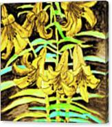 Yellow Lilies, Hand Drawn Painting Canvas Print
