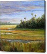 Yellow Marsh Canvas Print