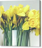 Yellow Narcissuses Bouquet In A Glass Vase Canvas Print