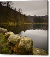 Yew Tree Tarn Canvas Print