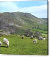 Yorkshire Dales - England Canvas Print